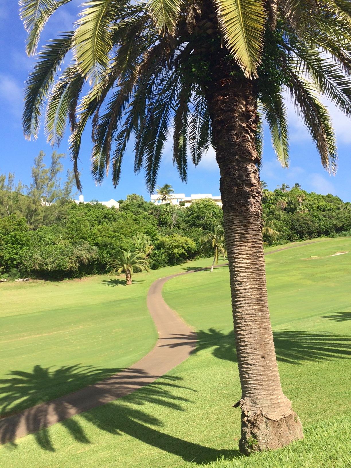 Bermuda - campo da golf