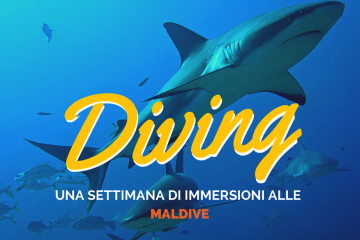 Diving alle Maldive