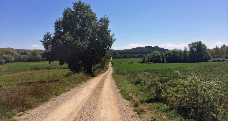 Weekend Toscana, Siena