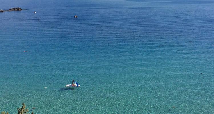 Isola d'Elba, Cavoli