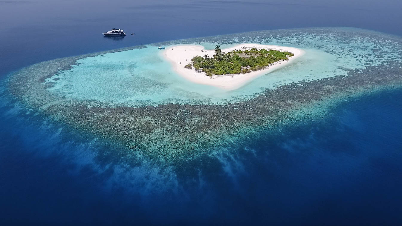 Escursione da Hangnaameedhoo con Maldive Alternative