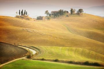 Toscana - di Marcin Sobas