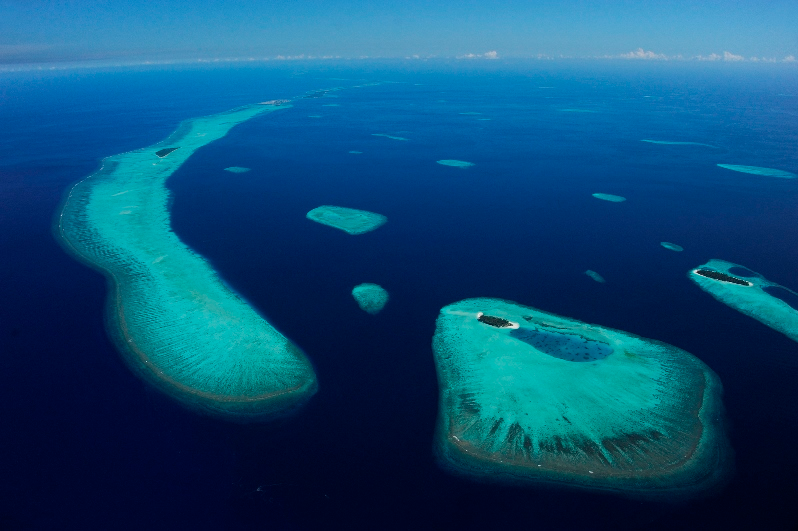 Mante Hanifaru Bay - foto di Thomas Peschak