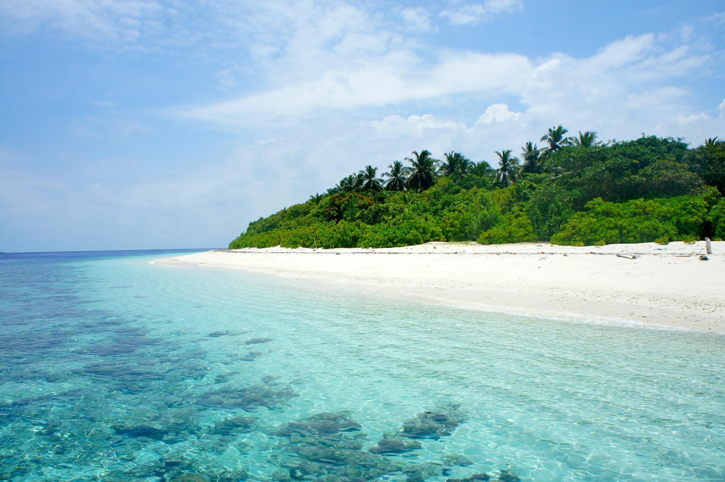 Maldive Alternative - Dharavandhoo