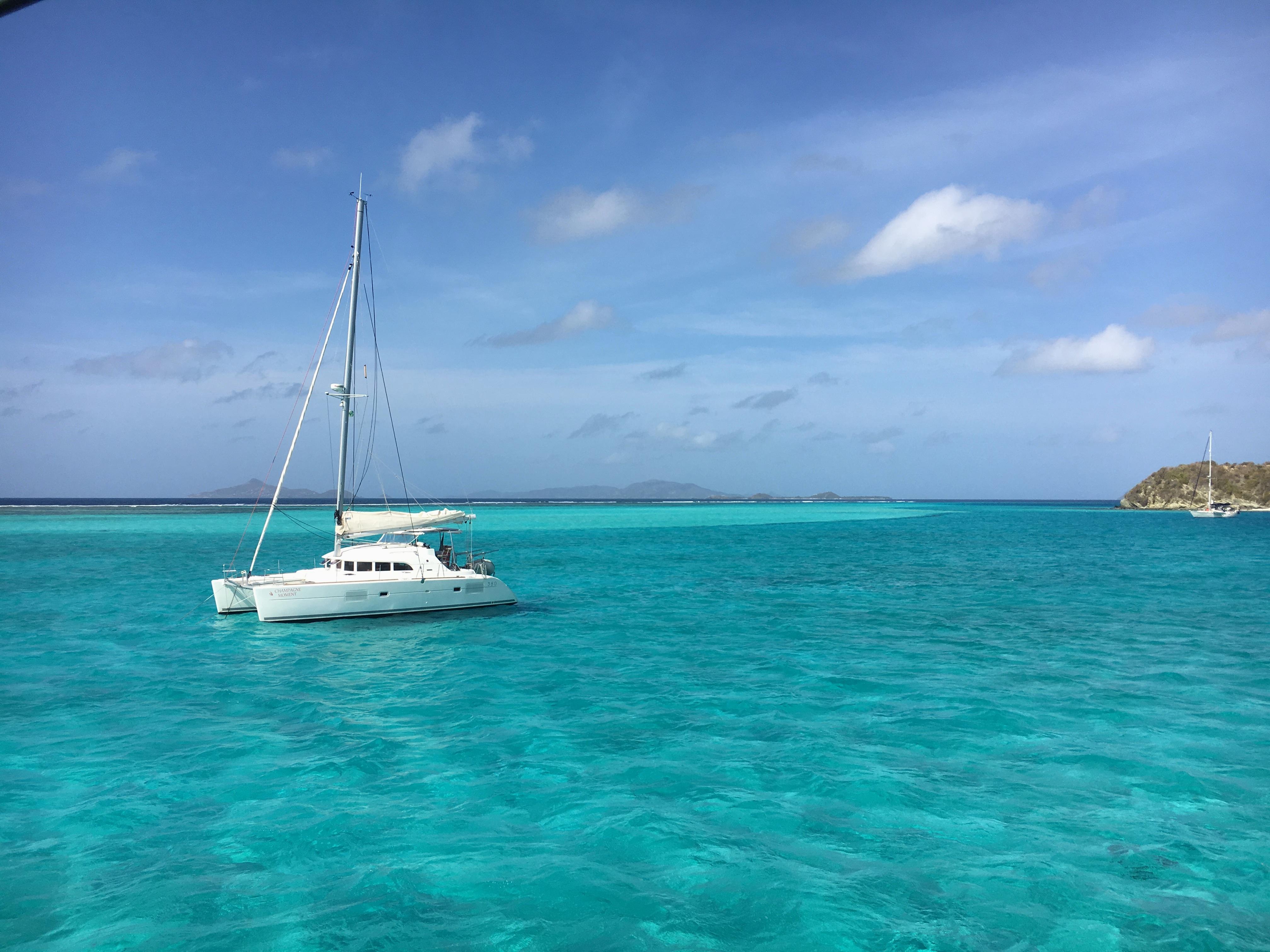 Tobago Cays Grenadine - crociera Caraibi