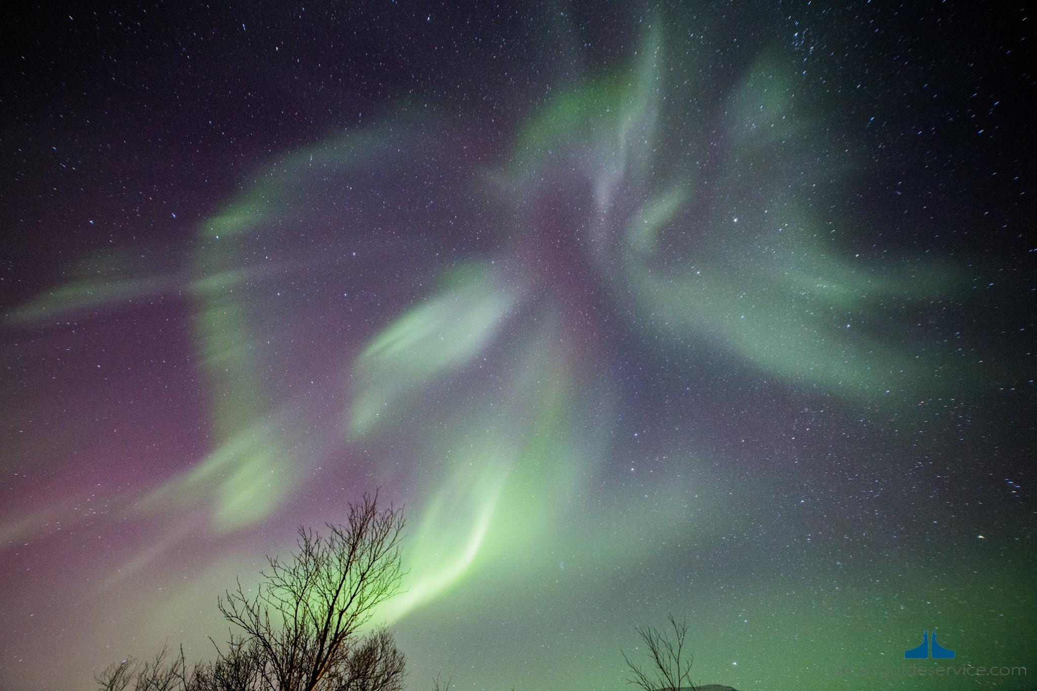 aurora-boreale-in-norvegia-1