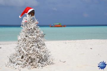 Maldive Alternative Natale