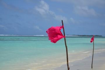 Thulusdhoo - Maldive Alternative