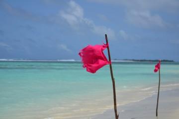 Thulusdhoo - Maldive Alternative