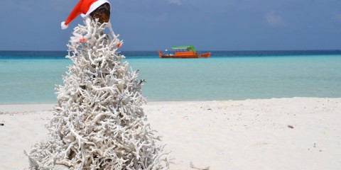Offerte Maldive Natale Capodanno Guest house