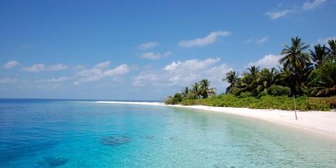 Maldive in guest house, Due Palme, Keyodhoo Natale Capodanno offerte Maldive,